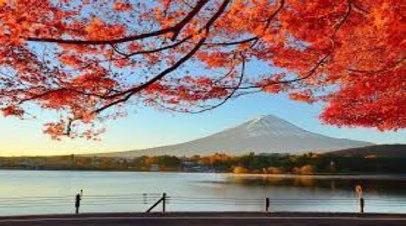 3 Tempat Rekomendasi Wisata Jepang Saat Musim Gugur!